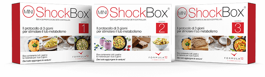 Mini Shock Box